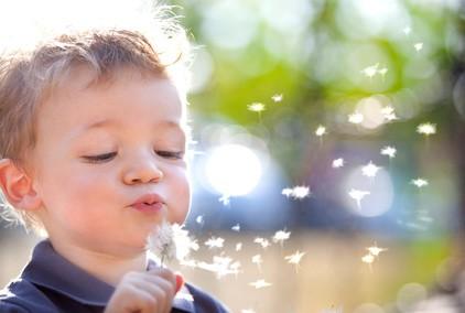 À Genève, une éco-crèche fait le bonheur des enfants