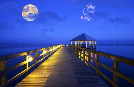 4 Novembre 2017, une pleine lune romantique !
