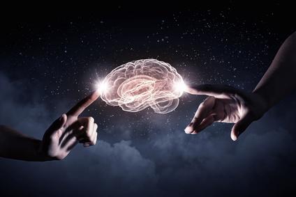 Bonheur et cerveau
