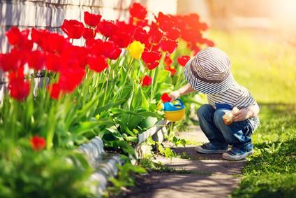Les fleurs: nos alliées du bonheur