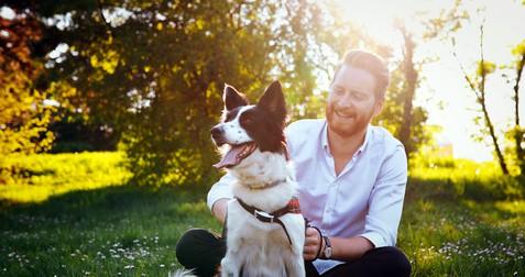 Le chien, compagnon du bonheur