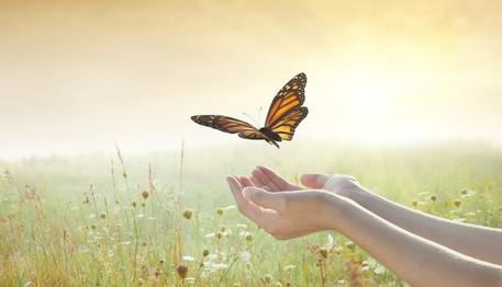 Le bonheur est-il possible dans les relations d'attachement?